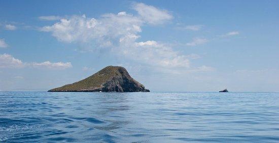 Isla Grosa. Campoamor Charter